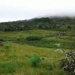 Bairro Riacho: excellent land to raise cattle
