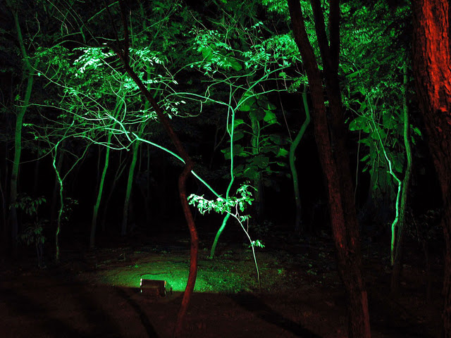 Night park in Gaporaba